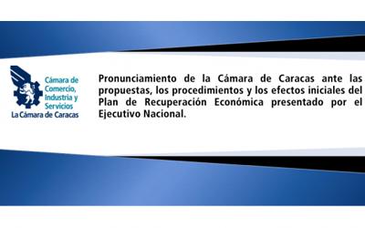 Pronunciamiento de la Cámara ante el Plan de Recuperación Económica presentado por el Ejecutivo Nacional